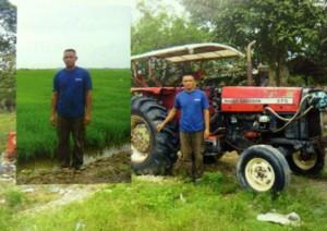 Sawah padi dan traktor yang digunakan untuk membajak sawah